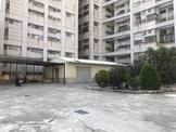台南市永康區南工街 建地 永康精華區250坪空地