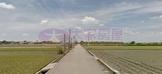 近交流道1741農地 (gMB05451)