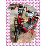 綠馳電動車E-Bike- AEC4 (紅)-電動自行車/電動輔助自行車/電動機車/電動車