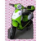 綠馳電動車E-Bike- AEF1 (綠)-電動自行車/電動輔助自行車/電動機車/電動車