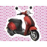 綠馳電動車E-Bike- AEP1 (紅)-電動自行車/電動輔助自行車/電動機車/電動車