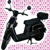 綠馳電動車E-Bike- AES2 (黑)-電動自行車/電動輔助自行車/電動機車/電動車