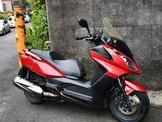 自售黃牌大羊 nikita 300 2012 車況順 路權的好選擇