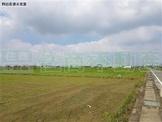新化外環道農地 (FS68791)