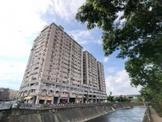 中山醫高樓超美3大房車位~只售666萬