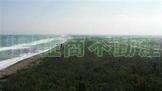 藍海黃金海岸景觀房C105 (XS60243)