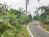 山知崙農地 (FS66289)