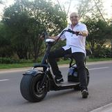 哈雷電動車 電動車 哈雷車 電動自行車 寬胎電動車 哈雷機車 防盜