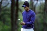 PGA錦標賽/員工酒駕身亡 伍茲遭控失職