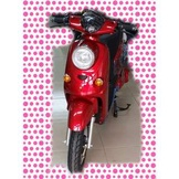 綠馳電動車E-Bike- AEK2 (鋰電)(白)-電動自行車/電動輔助自行車/電動機車/電動車