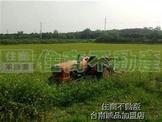 近新化高工方正農地 (GS08986)
