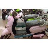 騎士專屬|環保電動車(粉色)