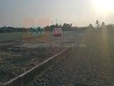 美濃農地 (c1233468)