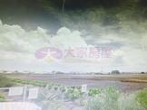 埤頭合興段美田 (gMB04880)