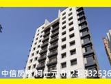 ➤草悟道➤國美館➤勤美誠品➤高樓層雙平車