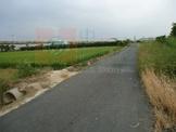 台南市新化區唪口 農地 新化唪口農地