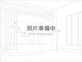 嘉義市東區大雅路二段 透天厝 大雅路店面(全聯旁)