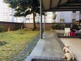 造鎮綠地大庭院一樓~小巢精英團隊-益瑞