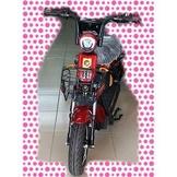 綠馳電動車E-Bike- AEH3 (紅)-電動自行車/電動輔助自行車/電動機車/電動車