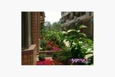 透天4樓半純住家,中庭花園,1樓超大車庫