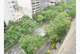 中山北錦州街口美景觀整層一層一戶近捷運站