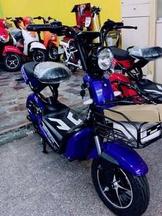 E-bike電動車🛵電動自行車 英宏58 electric bike