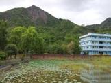 美濃湖畔莊園
