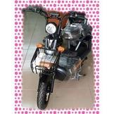 綠馳電動車E-Bike- AEC3 (鐵灰)-電動自行車/電動輔助自行車/電動機車/電動車