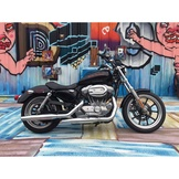 Harley-Davidson XL883L