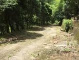竹山超值農地
