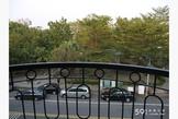 公園綠地套房~海科大、第一科大、樹德科大