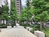 新北市林口區三民路 電梯大廈 星空樹面公園美景
