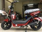 品質優越國產合格電動自行車(鋰電/鉛酸),送車牌防盜螺絲