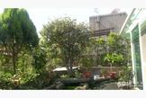 捷運科技大樓空中花園雅房和套房出租