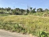 花壇南白沙屯段方正農地