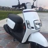 New Cuxi100 2010年珍珠白 搭 變色龍