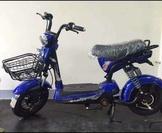 流行風檢驗合格電動自行車 - 鉛酸電池(使用台灣製造電池),訂車NT4,800