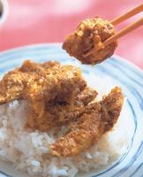 咖哩烤雞肉飯