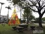 南投這棵耶誕樹不一樣 竟是「黃金起司」8日點燈